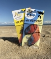 North Kiteboarding Car Air Fresheners